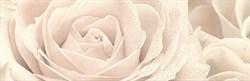12056\3F Декор Роза