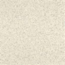 SP901800N Имбирь